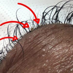 Eyelash extension close-up up with sebum buildup