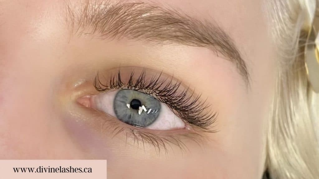 Woman with eyelash extensions. Zoomed on left eye.