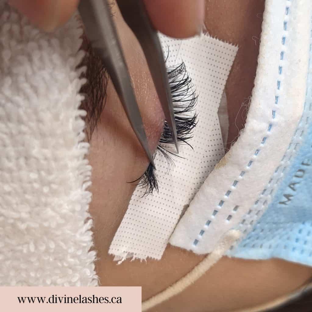 Hybrid eyelash extension isolated